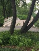 Central Park Bridge 2